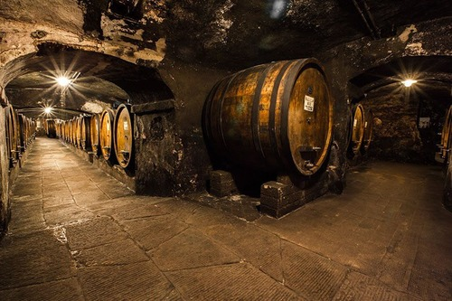 Ancient cellars